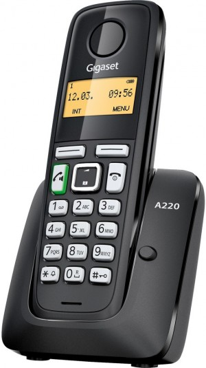a220.jpg